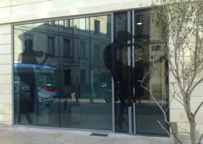 Portes d'entrée battantes vitrées avec dessin en insert